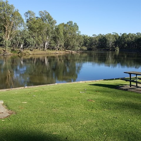 A view of the Murray at Memorial Park Howlong